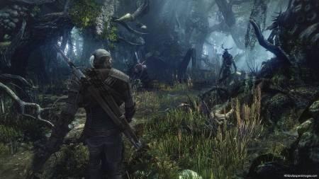 The-Witcher-3-Wild-Hunt-2013
