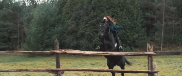 SOTD Horse
