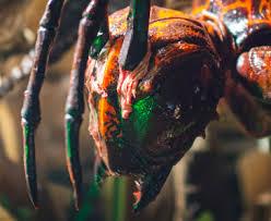 Stung Wasp 2