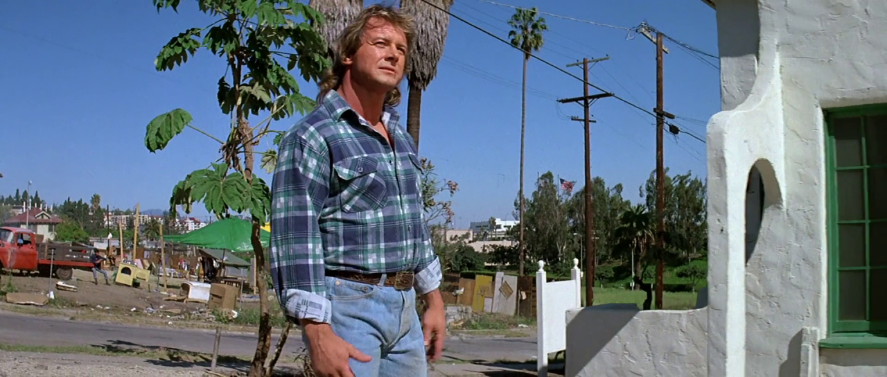 They Live Pic 1