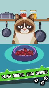 grumpy-cat-pic-1